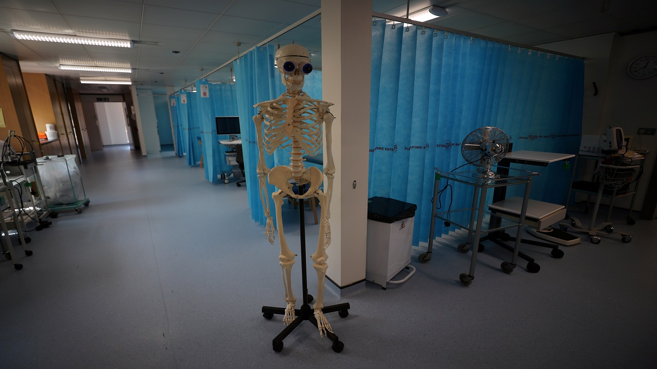 Q1. The aim to install the statue at Bristol-Myers Squibb Children's Hospital at Robert Wood Johnson University Hospital in New Brunswick will comfort pediatric patients. The bankrupt company put the 550-pound fiberglass figure up for sale along with other items from its Wayne headquarters. What is it being discussed? (Representative image: Reuters)
