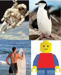 Q9. For Antartica, it is a Chinstrap Penguin, for Legoland California it is a Lego character, in Hawaii it is a surfboarder, in NASA Kennedy Space Center, it is an astronaut. What are we talking about?