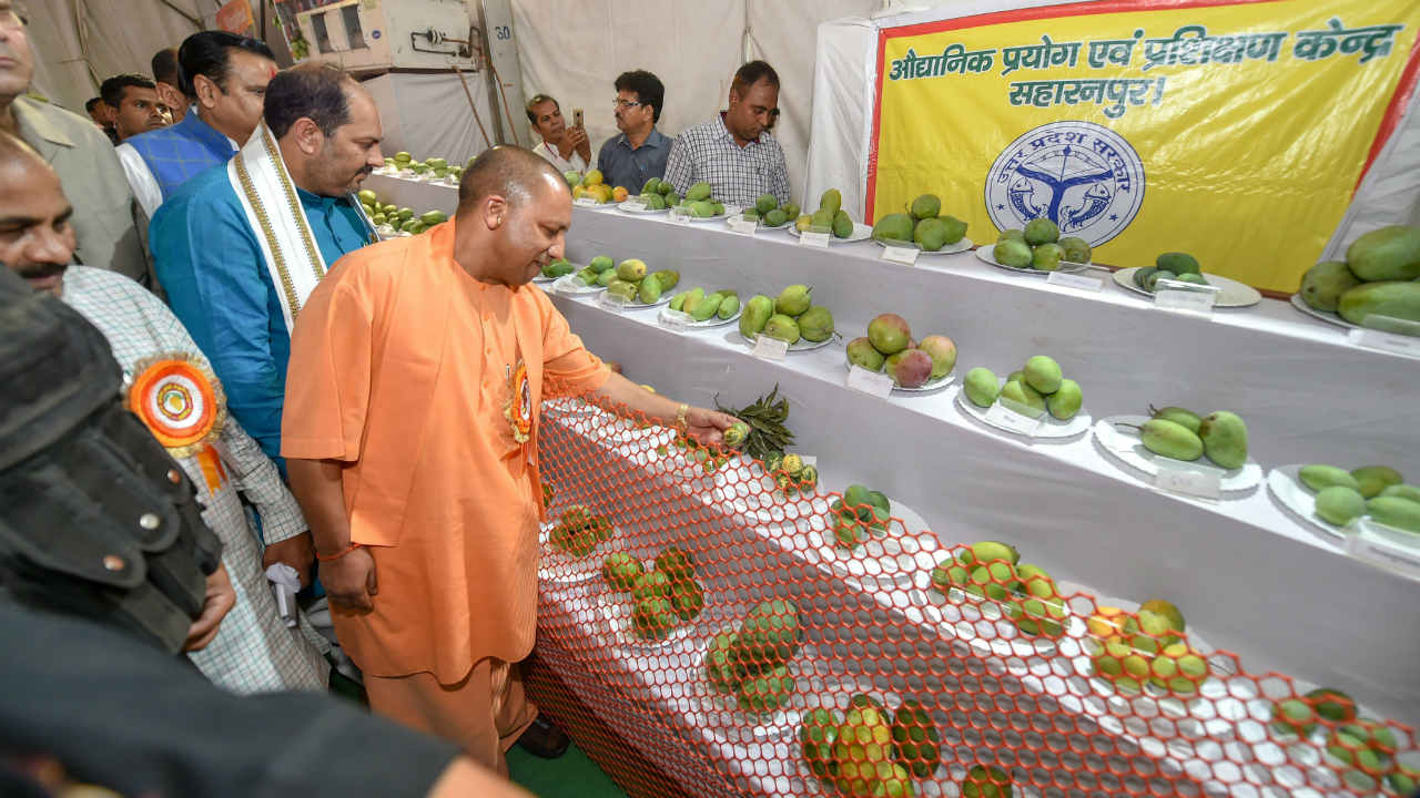 Uttar Pradesh Chief Minister Yogi Adityanath takes a round of the stalls after inaugurating the UP Mango Festival, in Lucknow. (Photo: PTI)