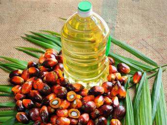Vegetable oil imports drop 2.72% in 2017-18