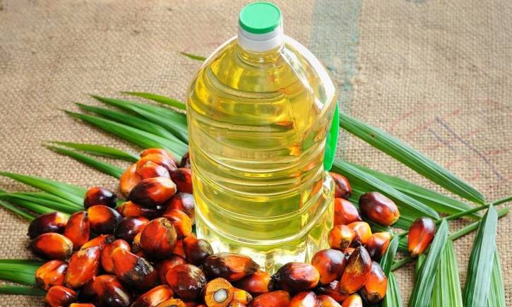 Image result for palm oil malaysia india