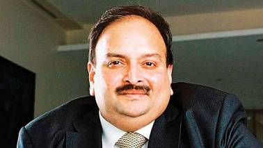 Antigua and Barbuda 'examining' Mehul Choksi's extradition request: MEA