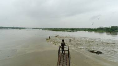 Yamuna at its 'healthiest' state this year due to rise in flood water inflow: Experts
