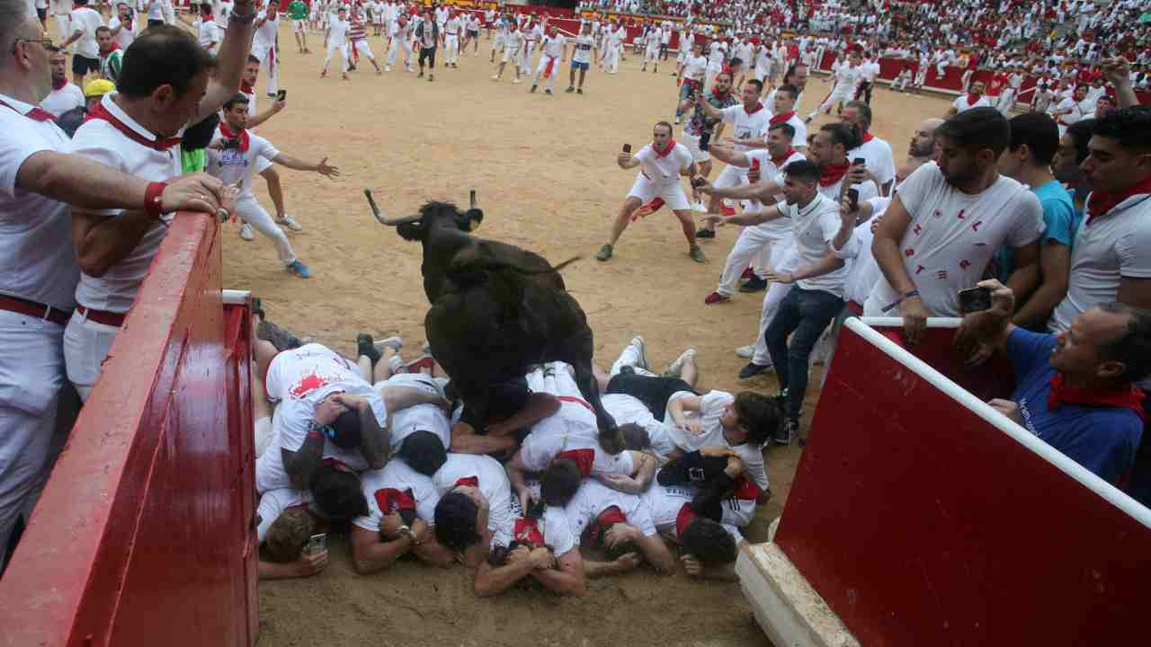 A wild cow leaps over revellers after the sixth running of the bulls of the San Fermin festival. (Reuters)
