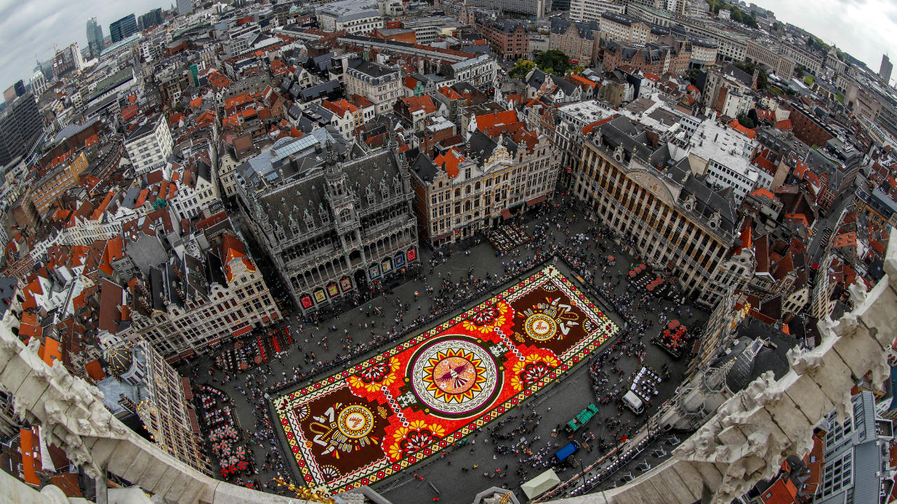 "A 1,800 square meters flower carpet on the theme ""Guanajuato, cultural pride of Mexico"" and made with over 500,000 dahlias and begonias is seen at Brussels' Grand Place, Belgium. (Image: Reuters)"