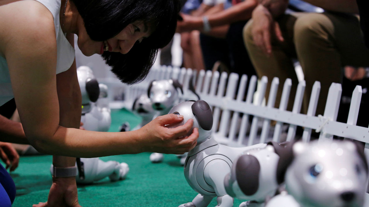 A woman pets her AIBO robot dog at Sony Corp's entertainment robot AIBO's fan meeting in Tokyo, Japan. (Image: Reuters)