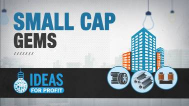 Ideas for Profit: Accumulate these 6 smallcaps for the long term