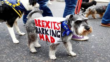 Thousands march in favour of People's Vote on Brexit