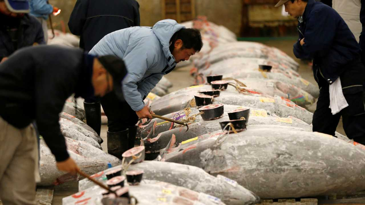 """The move to the new spot was welcomed by many, but some Tsukiji veterans said that the move has """"deprived the market of some of its soul."""" Michelin Star-winning chef Lionel Beccat said about Toyosu: """"The head says yes, but the heart says no."""" (Image: Reuters)"""
