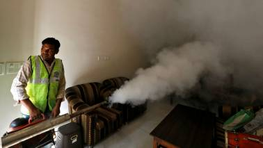 Zika cases rise to 80 in Rajasthan: Here's all you need to know