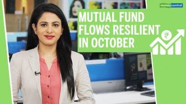 MF flows resilient despite fall in market
