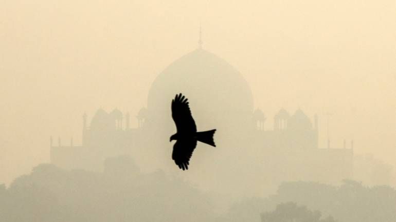 A bird flies past the Humayun's Tomb shrouded in smog in New Delhi, India, October 29 (REUTERS)