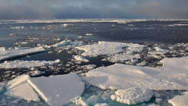 Global Warming: Arctic had second-lowest sea ice coverage this year