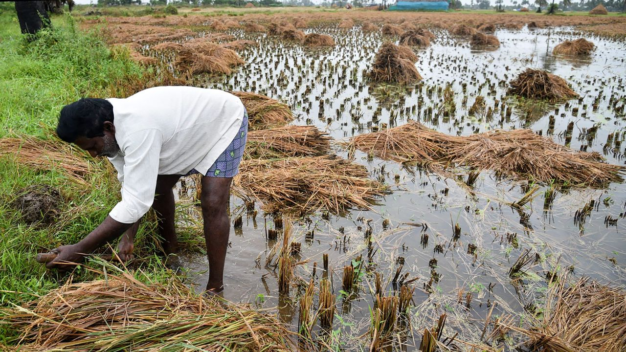 Farmers | Farmers with less than two hectares of land will be offered Rs 6,000 per year, as direct transfer, under the Pradhan Mantri Kisan Samman Nidhi scheme. The benefit will be transferred directly into the bank account of beneficiary farmers in three instalments of Rs 2,000 each. The scheme will cover more than 12 crore farmers across the country and will cost the government around Rs 75,000 crore.