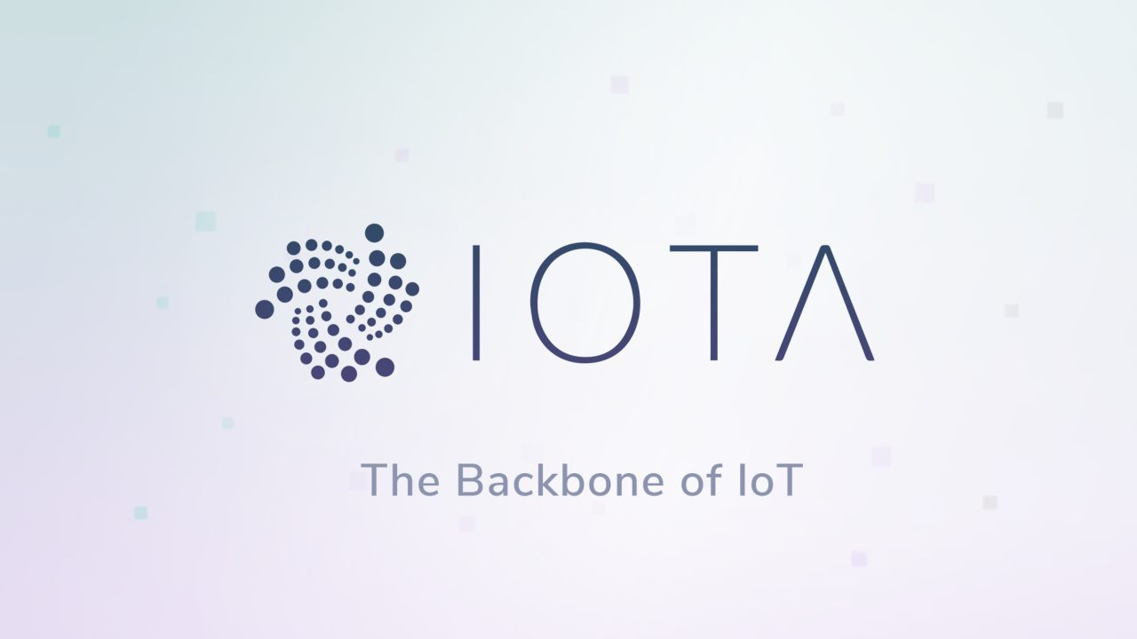 IOTA | Loss: $10 billion | Starting the year at a promising note, valued at over $11 billion, at the end of the year it was just a fraction of its prime. Currently its valuation is below $1 billion.