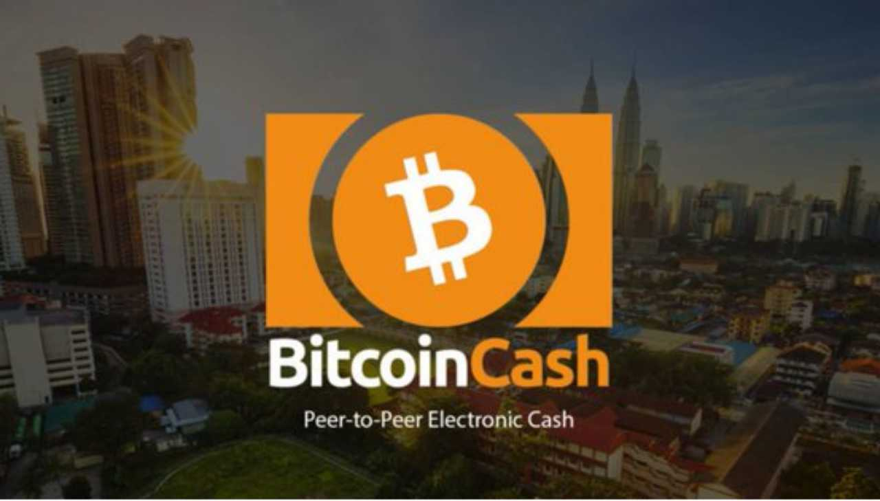 Bitcoin Cash | Loss: $38 billion | A hard fork of bitcoin lost over 92 percent of its market cap in 2018. It started the year valued at $41 and is currently worth around $3 billion.