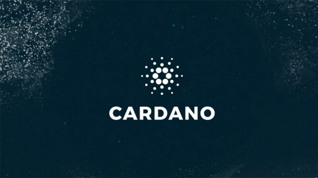 Cardano | Loss: $17.8 billion | Currently the 11th largest cryptocurrency suffered the fifth biggest loss among major cryptocurrencies over the year. The cryptocurrency was launched last year and soon zoomed to a valuation of $19 billion at the start of 2018. It further climbed to be worth $29 billion in late January. However, at the end of year, at $1 billion its valuation is a fraction of that at its prime.