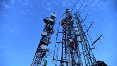 Green shoots in the telecom sector?