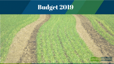Interim Budget 2019: Rural economy sees a not-so-great Rs 75,000-crore boost