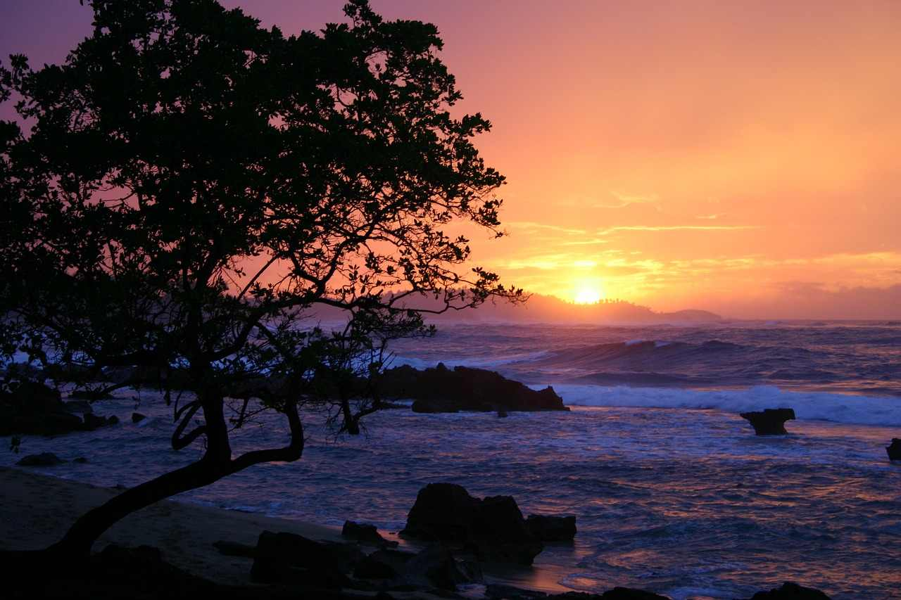 1. Puerto Rico | Caribbean island (Image: Pixabay)