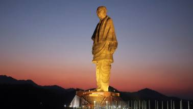 Gujarat govt snatching our land near Statue of Unity, say tribals