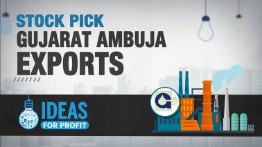 Ideas for Profit | Gujarat Ambuja Exports