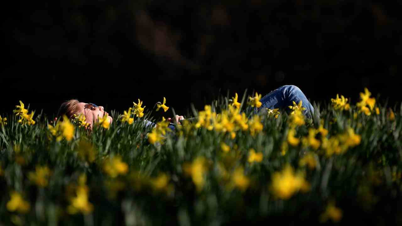 A woman relaxes in the sun in St James's Park in London, Britain. (Image: Reuters)