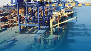 Adani Ports rallies 3% on clocking record 200 MMT cargo movement