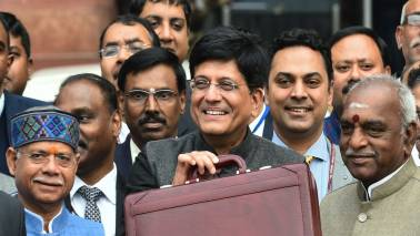 Budget 2019: Consumption, discretionary stocks to benefit on income tax rebate