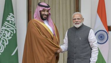 India No.1 investment destination for Saudi Arabia: Oil Minister