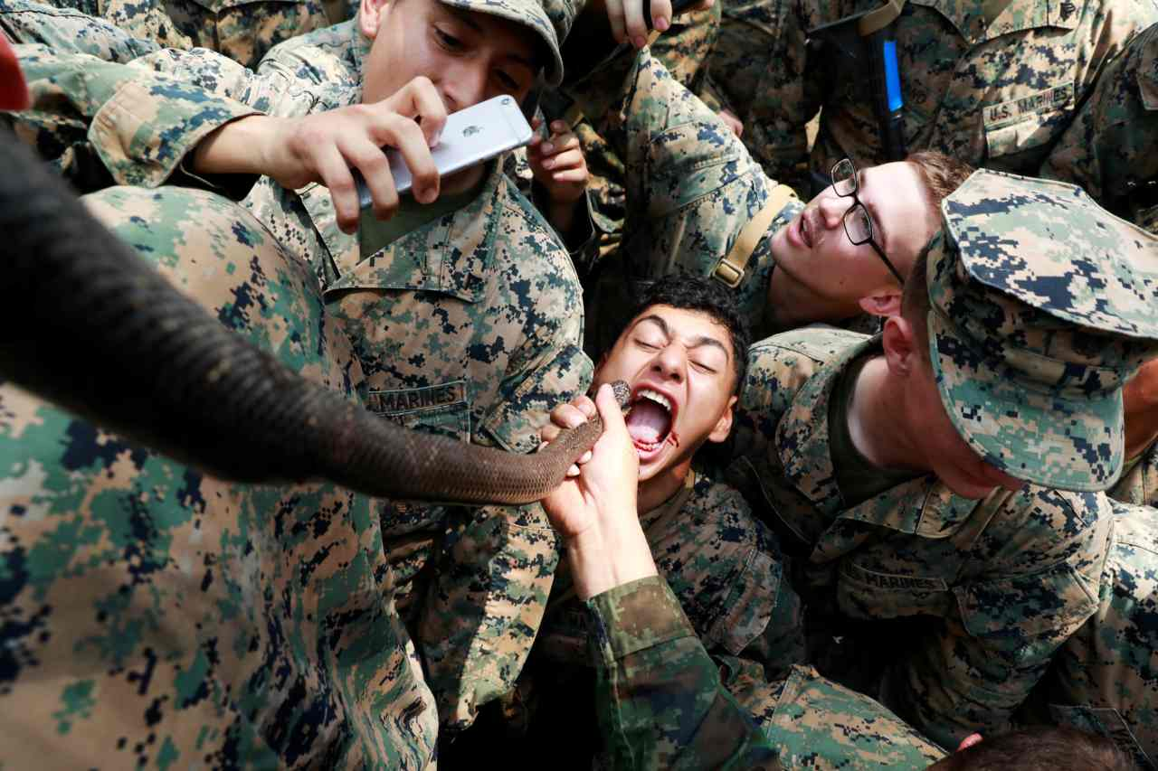 A soldier is fed snake blood during the Cobra Gold multilateral military exercise in Chanthaburi, Thailand. (Image: Reuters)