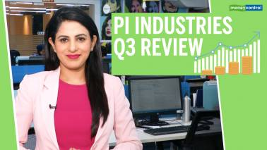 3 Point Analysis | PI Industries Q3 review