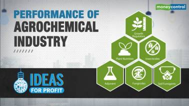 Agrochemical sector Q3FY19 review: Mixed bag; muted domestic growth, input costs weigh