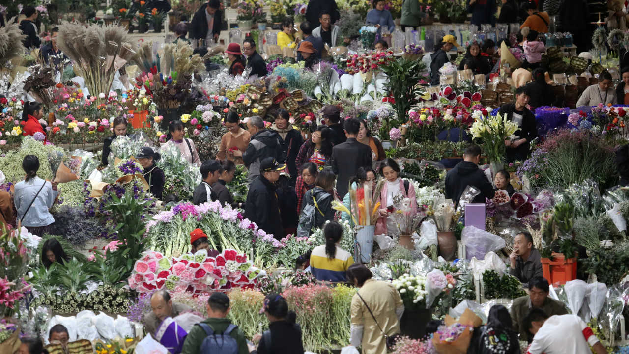 People shop flowers ahead of the Valentine's Day at a wholesale flower market in Kunming, Yunnan province, China. (Image: Reuters)