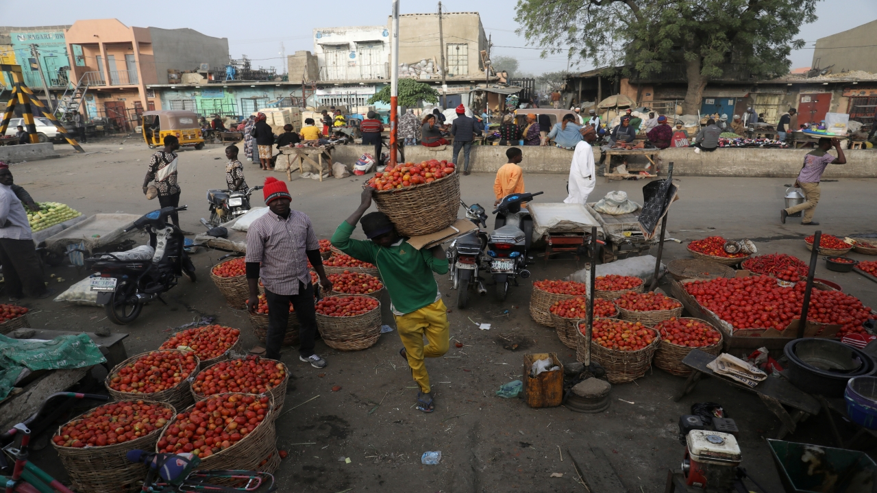 Vendors sell tomatoes at Sabon-Garri market after the postponement of the presidential election in Kano, Nigeria. (Image: Reuters)