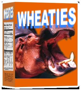 Answer: Wheaties