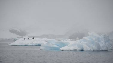 China set to make law on Antarctic operation and protection