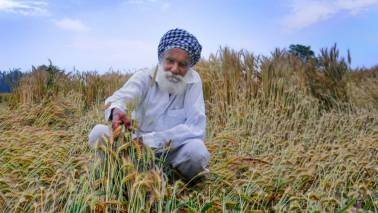 CMs demand more central funds to deal with agri distress