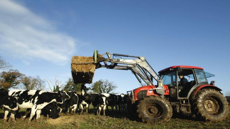 Image result for britain cow use 5g internet for smart collar access