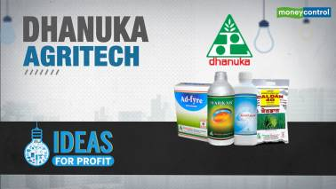 Ideas for Profit | Steep correction in this agri stock could usher in gains