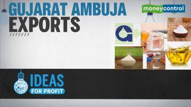 Gujarat Ambuja Exports: Earnings momentum to continue