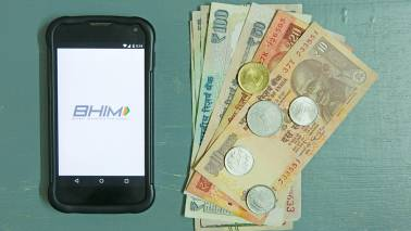 Overseas UPI payments likely to be operational in 6 months: Report