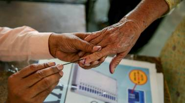 Maharashtra voting 2019 LIVE: Voter turnout recorded at 16.34% till 11 am
