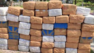Anyone lost a huge amount of 'ganja'? Assam Police found it