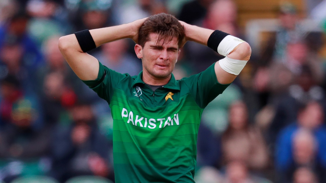 Pakistani pacer Shaheen Afridi then accounted for the wickets of Glenn Maxwell in the 34th over and Warner in the 38th over. Maxwell made a quickfire 20 while Warner was dismissed after playing an innings of 107. Australia were 242/4 when Warner walked back to the dressing room. (Image: Reuters)