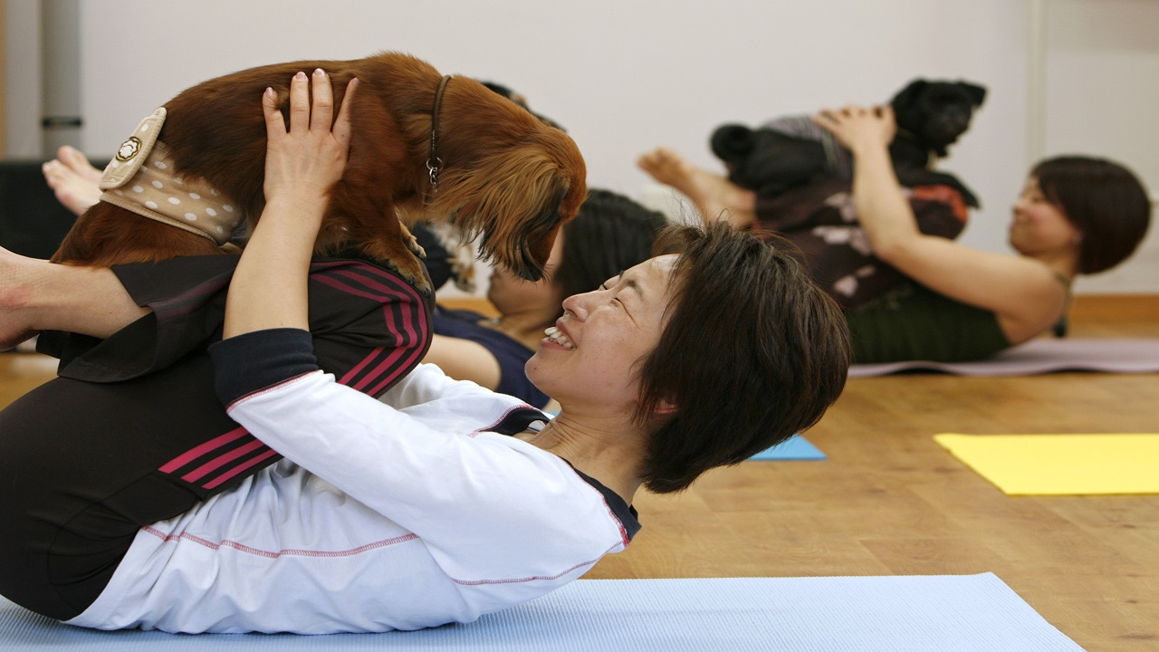 Dog Yoga: This form of yoga creates an attachment with your dog and a bond that is full of harmony. (Image Source: Reuters)