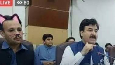 'Cat filter' used in Pakistan ministers' livemedia address, photos go viral