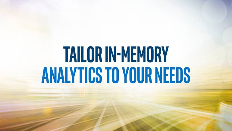 Tailor In-memory Analytics to Your Needs