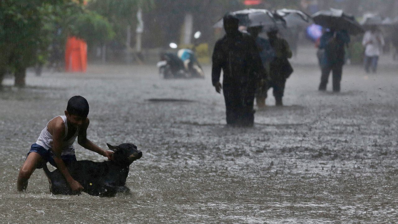 A boy playing with his pet dog in a waterlogged street during monsoon rains in Mumbai. (Image: AP)