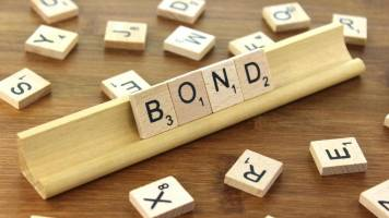 PMEAC member cites Rajan & Reddy, asks govt to rethink sovereign bond plan